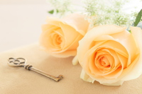 Roses and antique key Stock photo [2842721] Rose