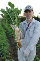 Men with radish Stock photo [2847347] Daikon
