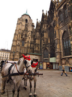 St. Stephen's Cathedral and the horse-drawn carriage Stock photo [2921377] St.