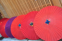 The side-by-side Japanese umbrella Stock photo [2923576] Kyoto