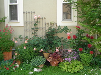 Spring garden Stock photo [3005542] Spring