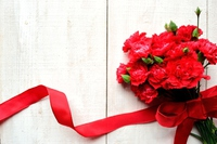 Bouquet of red carnations Stock photo [3006888] Carnation