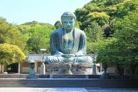 Kamakura Great Buddha Stock photo [3007966] Kamakura