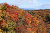 The autumn leaves were Matsukawa valley Stock photo [3011600] Hachimantai