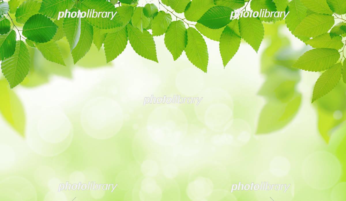 Environment image イラスト素材