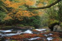 Autumn of Kikuchi valley Stock photo [3089516] Kumamoto