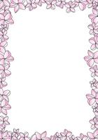 Frangipani frame pink [3097708] Plumeria