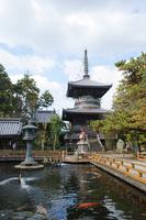 Tokushima Prefecture sacred mountain temple Stock photo [3187771] Sacred