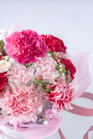 Carnation bouquet Stock photo [3193548] Carnation
