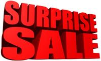 Surprise Sale [3195813] Surprise