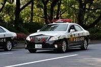 Patrol car (Crown) Stock photo [3300207] Patrol