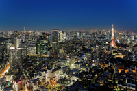 Tokyo Tower and Sky Tree and urban landscape lights up Stock photo [3303520] Sky