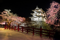 Hirosaki Castle and cherry blossoms Stock photo [3387804] Landscape