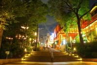 Night of Inokashira Park Stock photo [3388178] Inokashira