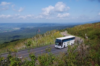 Bus that runs the road of plateau Stock photo [3395516] Lotus