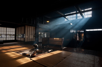 Sunshine that plugs into a hearth end Stock photo [3486145] Nakasendo