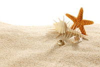 Summer of image Stock photo [3586449] Sand
