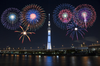 Sky tree and fireworks Stock photo [3589680] Fireworks
