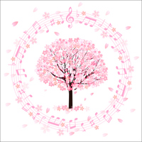 Sakura note background [3595284] Cherry