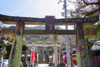 Suyama shrine approach Stock photo [3698804] Saga