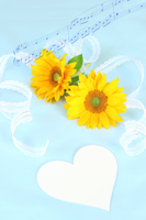 Synthesis of sunflower and Hearts and music Father's Day Stock photo [3805577] Father's