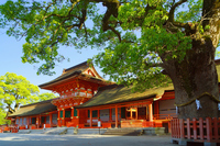 Early summer of Shrine Usa Stock photo [3813847] Much