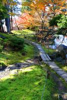 Your herb garden (your herb garden) Stock photo [3814133] Your