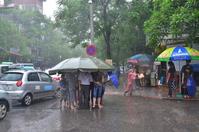 A sudden rain Stock photo [3913386] Vietnam