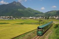 """Yufu and express """"Yufuin Forest"""" Stock photo [3999249] Yufu"""
