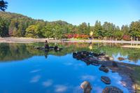 World Heritage Mōtsū-ji autumn leaves (Iwate Hiraizumi Town) stock photo
