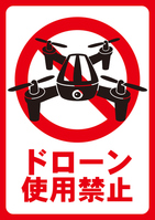 Drone disabled [4005102] Drone