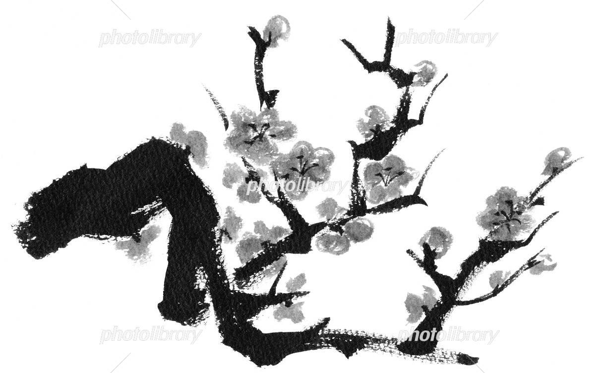 梅の木紅梅モノクロ イラスト素材 4095230 フォトライブ