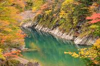 Autumn Dakigaerikeikoku Stock photo [4085641] Dakigaerikeikoku