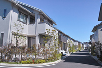 Emerging residential area Stock photo [4093611] Housing