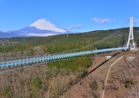 Mishima Sky Walk and Mount Fuji Stock photo [4207719] Fuji