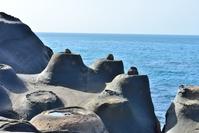 野柳地質公園 燭台岩