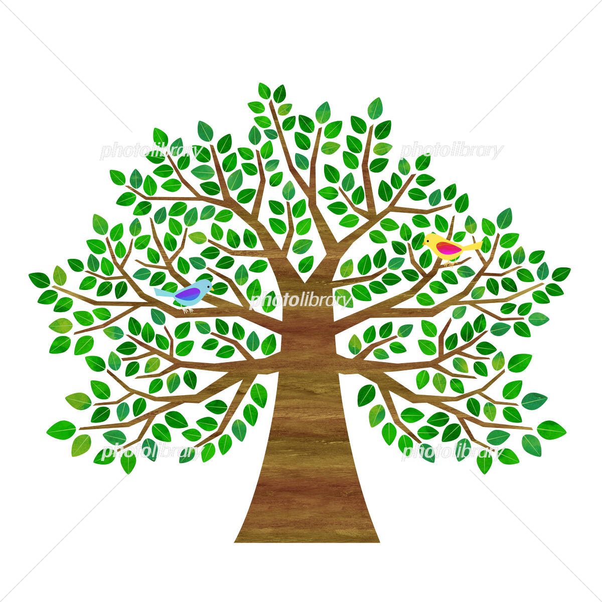 Big trees and birds イラスト素材