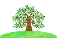 Big trees and birds [4482747] wood