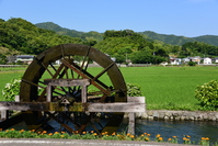 Waterwheel of Yasunami Stock photo [4485711] Shikoku
