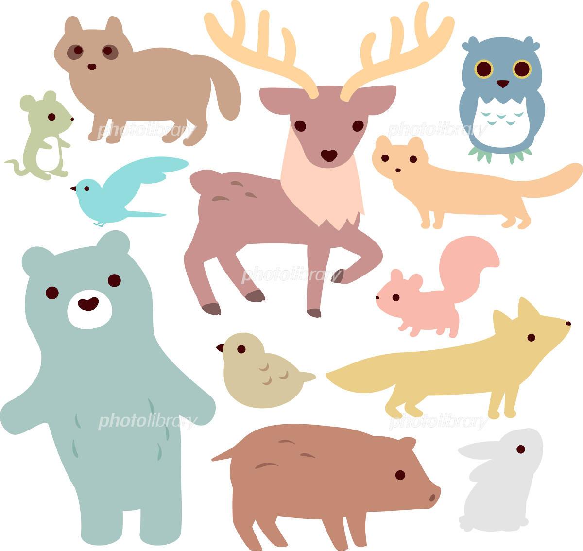 森の動物のイラストセット イラスト素材 4623187 フォトライブ