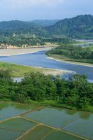 Shinano River and paddy Stock photo [4623600] Niigata