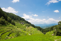 Ehime Prefecture Uchiko-cho Izumida rice terraces Stock photo [4627718] Japan