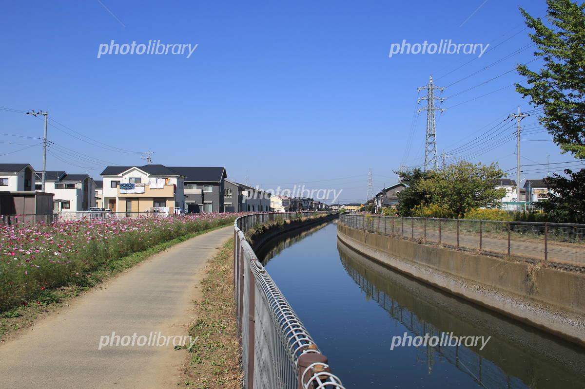 久喜市鷲宮の北側用水路 写真素材 [ 4697396 ] - フォトライブラリー ...