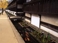 Tsuwano Stock photo [8310] Yamaguchi