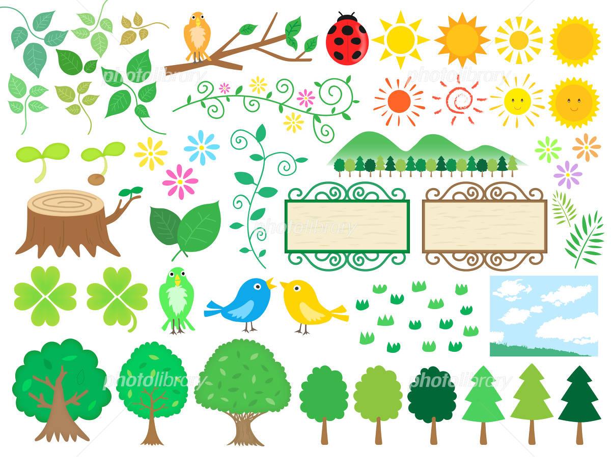 森の手書きイラスト素材セット イラスト素材 4838414 フォトライブ