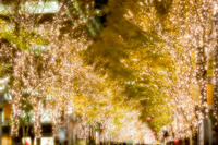 Marunouchi Illumination Stock photo [4847126] illumination