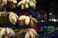ミャンマーの市場