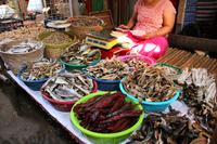 ミャンマーの市場の干物