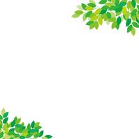 Fresh green frame [4959843] wood