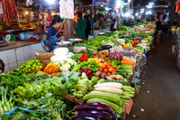 Cambodia, Siem Reap's Old Market (Market Vegetables) Stock photo [5054107] Cambodia
